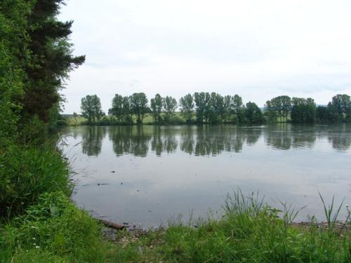 Velký Otovský rybník
